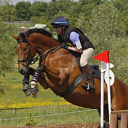 Introducing PhysioNeeds Equestrian